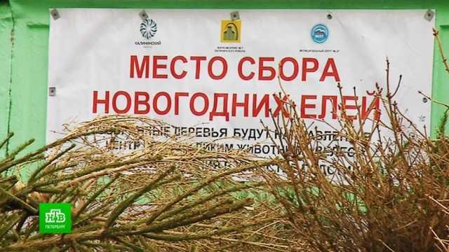 Russlands erster Lotterie-Milliardär sagte gegenüber NTV, Wofür wird er Geld ausgeben? // ntv.ru.