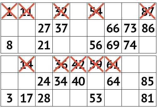 Check Russian Lotto ticket | results 1349 circulation of the chair