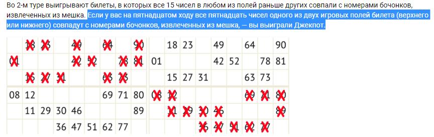 Bingo Lottery-75