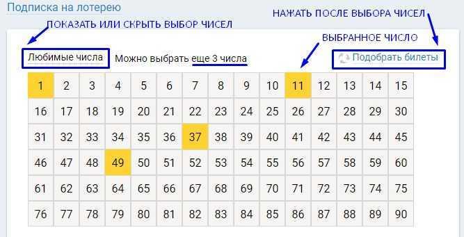 ตั๋วล็อตโต้รัสเซียซื้อราคาออนไลน์