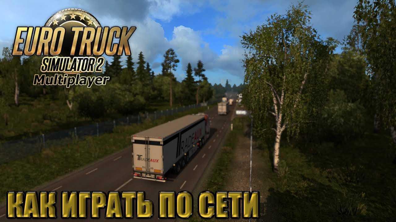 Wie man Euro Truck Simulator online spielt 2 Multiplayer?