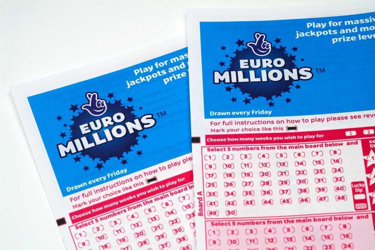 Loterie zdarma